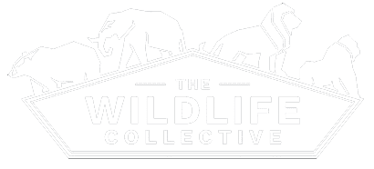 The Wildlife Collective